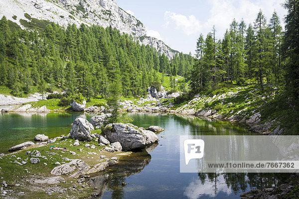 Bergsee an der Koca pri Triglavskih jezerih  Sieben-Seen-Hütte im Sieben-Seen-Tal  Nationalpark Triglav  Slowenien  Europa Bergsee an der Koca pri Triglavskih jezerih, Sieben-Seen-Hütte im Sieben-Seen-Tal, Nationalpark Triglav, Slowenien, Europa