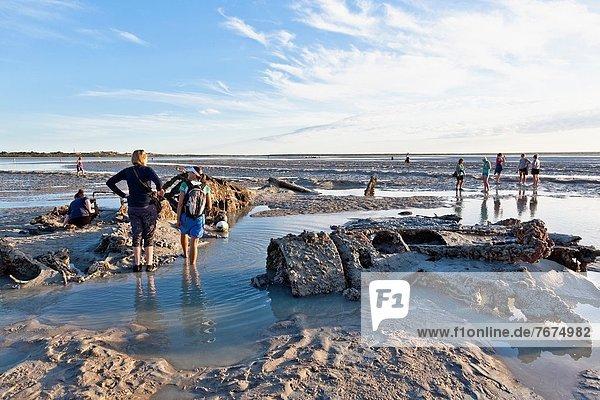 niedrig  fliegen  fliegt  fliegend  Flug  Flüge  Forschung  Boot  Gezeiten  Ruine  Australien  Bucht  Schlamm  Western Australia