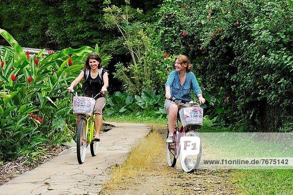 Frau  gehen  fahren  Insel  Mittelamerika  jung  mitfahren