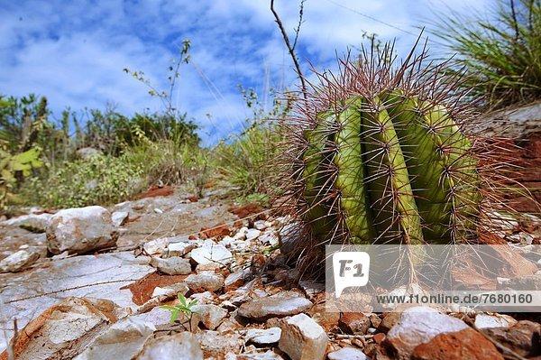 Naturvolk  Dominikanische Republik