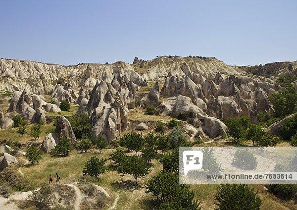 Truthuhn  nahe  Felsbrocken  Anordnung  Schornstein  Anatolien  Kappadokien  Eurasien  Fee  Türkei