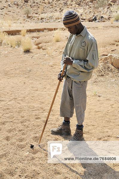 Junger Ranger  Pfad zur Weißen Dame in der Tsisab-Schlucht  Brandberg  Damaraland  Namibia  Afrika