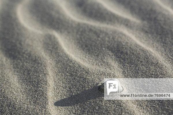 liegend liegen liegt liegendes liegender liegende daliegen Strand Sand