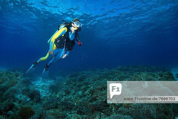 Scuba diver at a coral reef  South China Sea