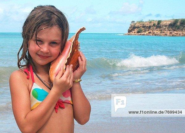 halten  Strand  klein  Karibik  Seemuschel  Entdeckung  Mädchen
