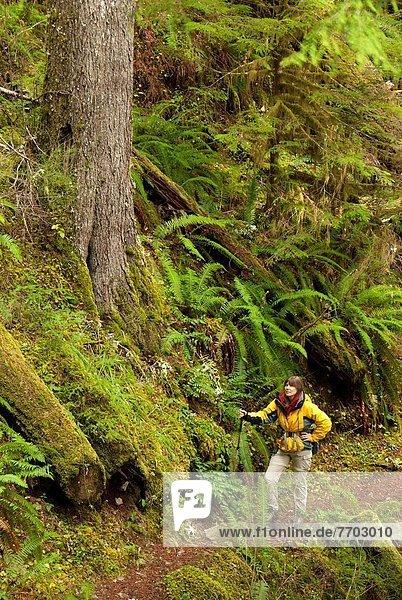 Parker Falls Trail  Umpqua National Forest  Oregon