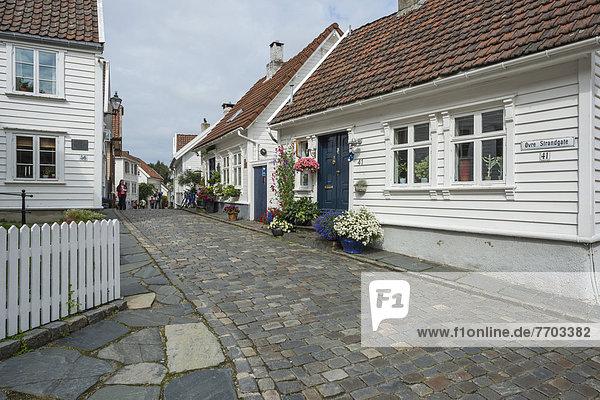 Kopfsteinpflaster Landstraße Blume Gebäude Stadt weiß Geschichte Holz Dekoration