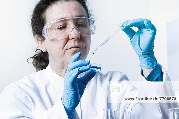 Wissenschaftler lässt Flüssigkeit in die Petrischale fallen