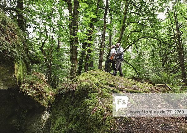 Senior  Senioren  Tal  Wald  wandern  Berg