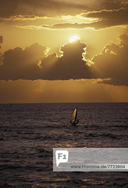 Windsurfer  surfer  Sonnenuntergang  Silhouette  Aktion  dramatisch  Bernstein  Hawaii