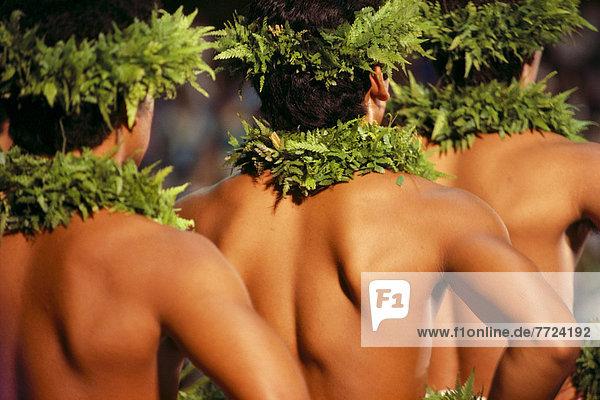 Rückansicht  Tänzer  Ansicht  Hawaii  lei  Linie  Freier Oberkörper