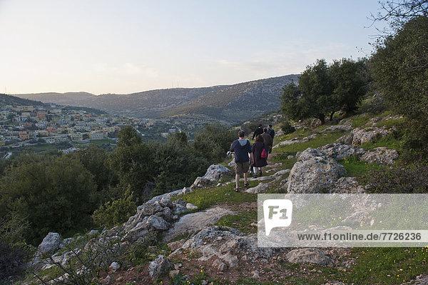 zwischen  inmitten  mitten  nahe  folgen  Baum  Dorf  wandern  vorwärts  Olive  Naher Osten