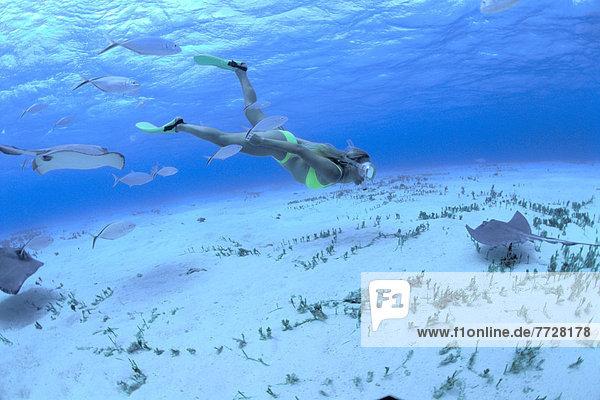 Fisch  Pisces  Frau  Karibik  Schnorchel  Cayman-Inseln