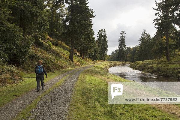 Rucksack  Frau  gehen  Weg  Fluss  vorwärts