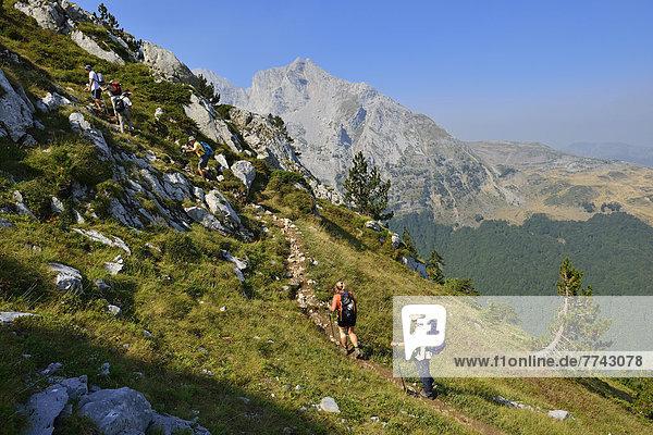 Europa  Montenegro  Wandergruppe auf dem Komovi-Gebirge