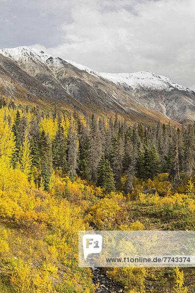 Kanada  Blick auf die Landschaft