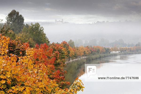 Ludwig-Donau-Main-Kanal im Herbst