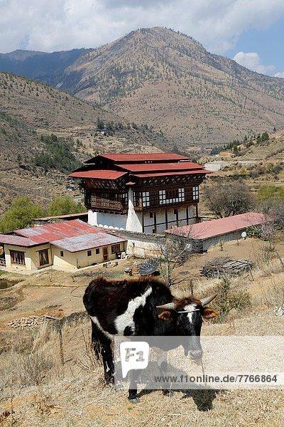 Tradition Wohnhaus Tourist füttern