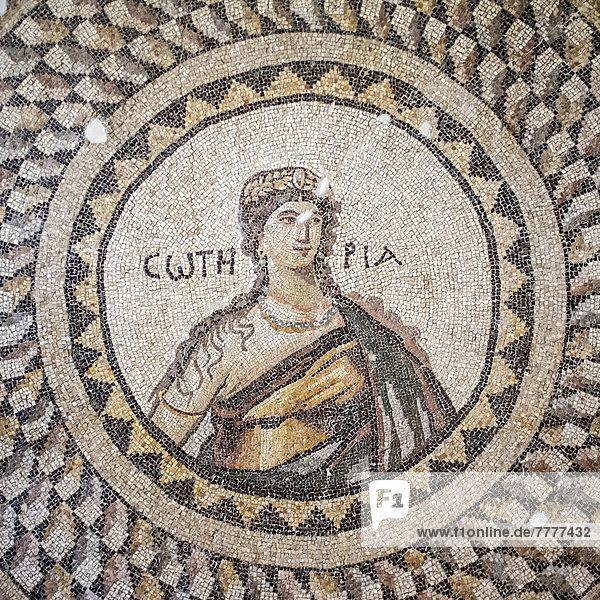 Soteria,  Mosaik,  5. Jh. vor Chr. Hatay Museum für Archäologie