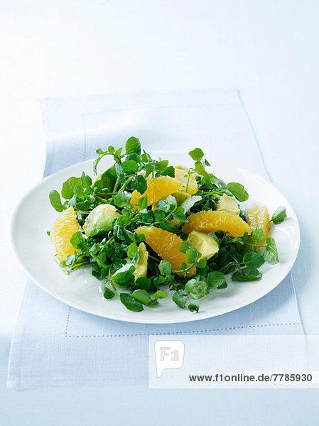 Brunnenkresse  Avocado und Orangensalat
