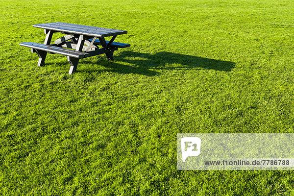 Leerer Picknicktisch auf dem Rasen