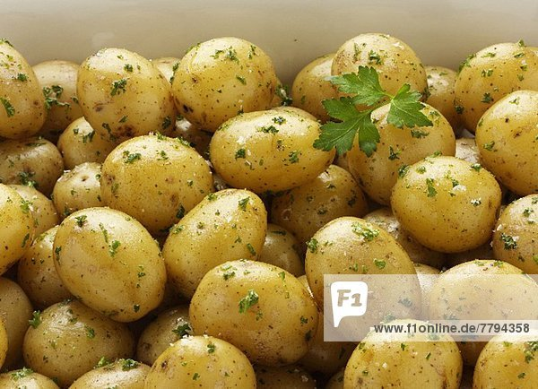 Vildemose Kartoffeln mit Petersilie