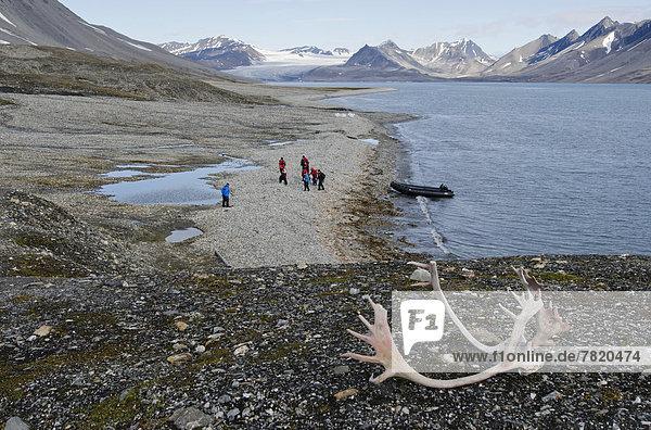Rentiergeweih  Zodiac-Schlauchboot und Gäste einer Expeditionskreuzfahrt beim Landgang
