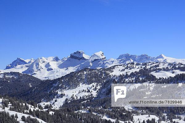 Kälte blauer Himmel wolkenloser Himmel wolkenlos Panorama Europa Berg Winter Baum Wald Holz Berggipfel Gipfel Spitze Spitzen Alpen Ansicht Zimmer Fichte Tanne Westalpen Schnee schweizerisch Schweiz Zentralschweiz Schweizer Alpen