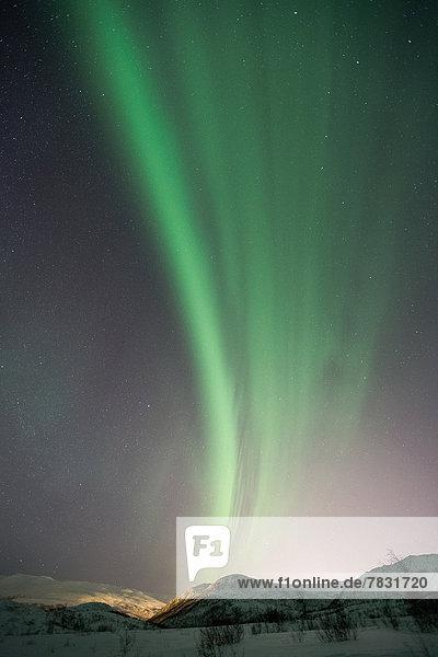 Farbaufnahme  Farbe  Landschaftlich schön  landschaftlich reizvoll  Europa  Winter  Nacht  Beleuchtung  Licht  Himmel  Landschaft  grün  Figur  Norwegen  Polarlicht  Naturerscheinung  Sehenswürdigkeit  Skandinavien