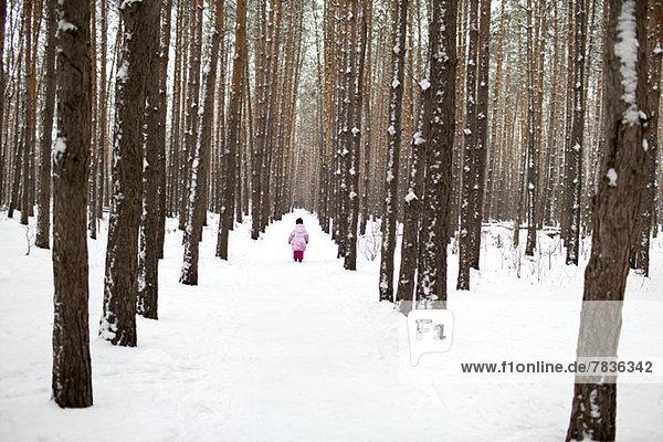 Ein junges Mädchen,  das einen schneebedeckten Pfad im Wald hinuntergeht.