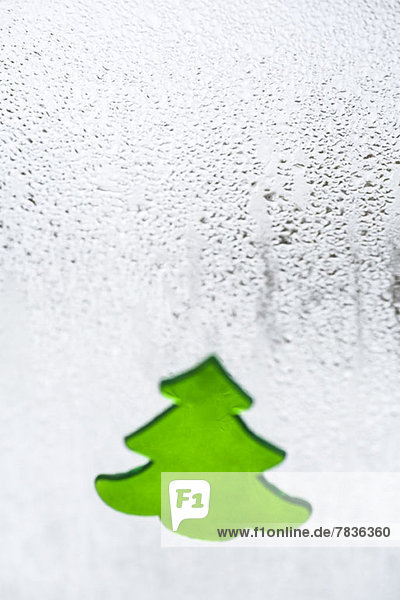 Ein Christbaumschild auf einem Fenster mit Kondenswasser,  Nahaufnahme