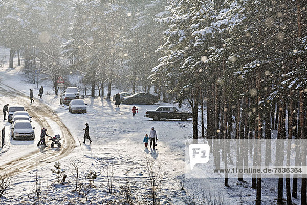 Menschen,  die im Winter zu und von geparkten Autos am Waldrand gehen.