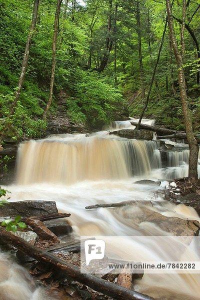 Vereinigte Staaten von Amerika  USA  Küche  Bach  Frühling  Überschwemmung  Tal  Pennsylvania