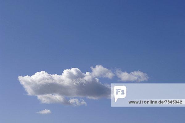 Germany  Bavaria  White cumulus cloud in blue sky