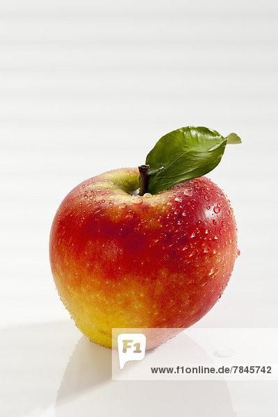 Apfel auf weißem Hintergrund  Nahaufnahme