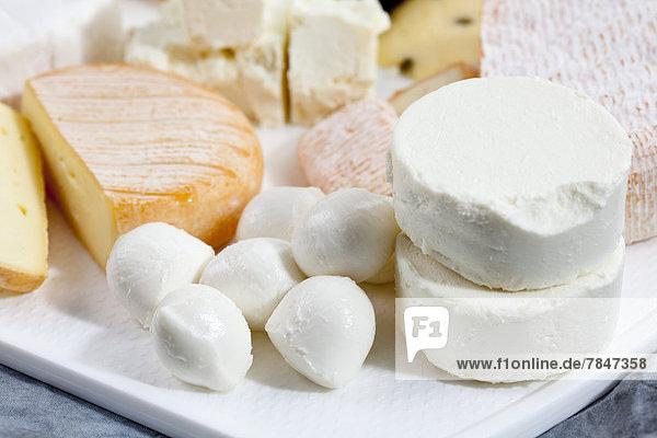 Mozzarella  Ziegenkäse  Feta und Limburger Käse auf dem Schneidebrett  Nahaufnahme