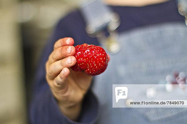 Mädchen hält Erdbeere in der Hand  Nahaufnahme