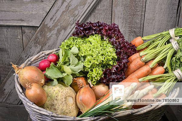 Deutschland  Karotten  Spargel  Sellerie  Zwiebeln  Gartenrettich  Schnittlauch im Korb