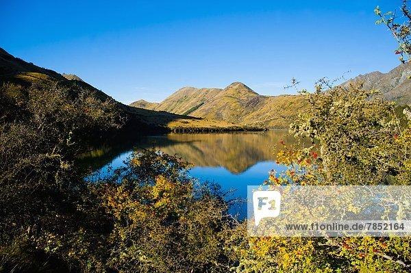 Morgen  Spiegelung  See  früh  Pazifischer Ozean  Pazifik  Stiller Ozean  Großer Ozean  neuseeländische Südinsel  Neuseeland  Otago  Queenstown  Reflections