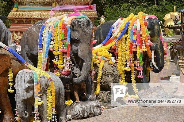 Landschaftlich schön  landschaftlich reizvoll  Elefant  Südostasien  Asien  Phuket  Thailand Landschaftlich schön, landschaftlich reizvoll ,Elefant ,Südostasien ,Asien ,Phuket ,Thailand