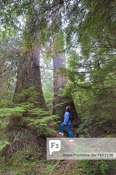 Hiking in Naikoon Provincial Park  Haida Gwaii (Queen Charlotte Islands)  British Columbia  Canada  North America