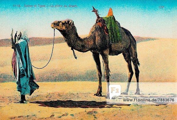 Frankreich  Wüste  Gebet  Sahara  Postkarte  Karte Frankreich ,Wüste ,Gebet ,Sahara ,Postkarte, Karte