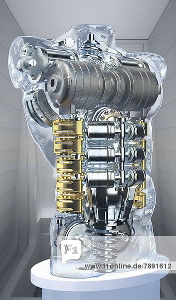 Motor in einem anatomischen Modell