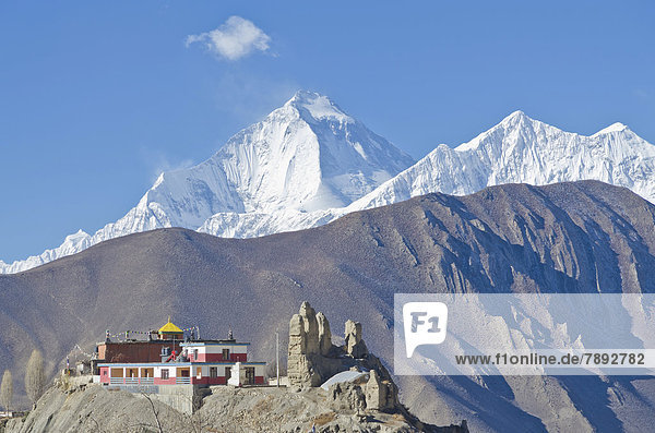 Dhaulagiri Mountain  8167 m  Jhong Gompa in the foreground  seen from Muktinath