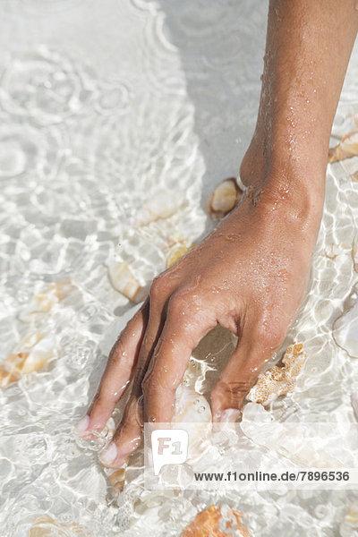 Frau pflückt Muschel am Strand