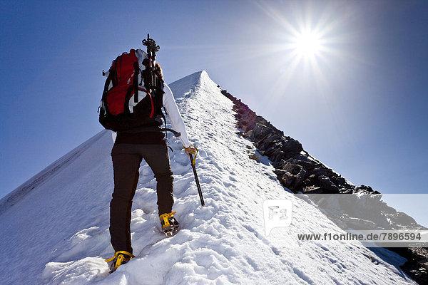 Bergsteiger beim Aufstieg zum Hochfeiler über den Gipfelgrat