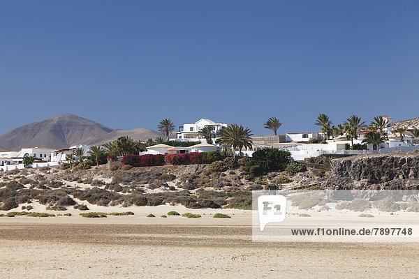 White buildings and palm trees  Casas Risco del Paso