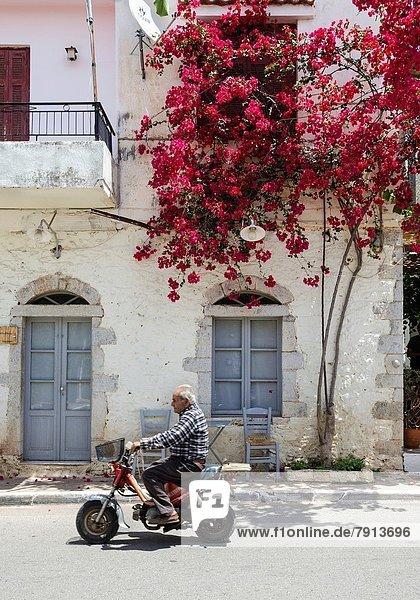 Wohnhaus Straße Dorf Bougainvillea Griechenland Mani alt Peloponnes