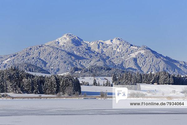 Zugefrorener Hopfensee mit Edelsberg und Alpspitz