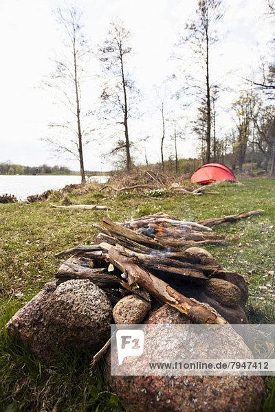Holz für Lagerfeuer auf dem Campingplatz gesammelt